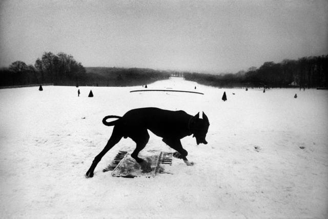 Parc de Sceaux - 1987