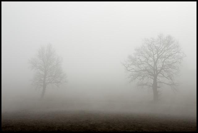 hiver - cc by-sa manu'pintor - déc.16