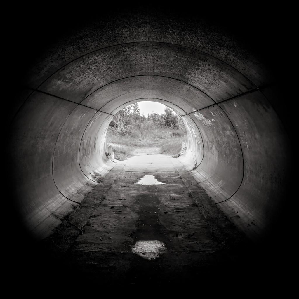 le bout du tunnel - cc by-sa manu'pintor - mai 21