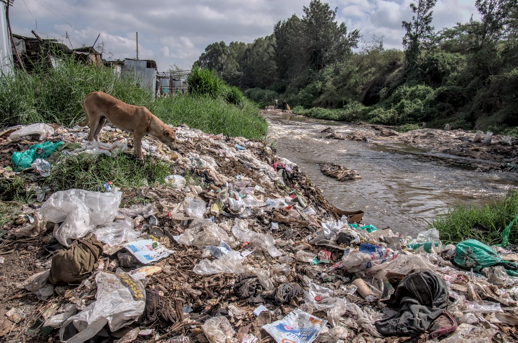 plastic forever - cc by-sa manu'pintor - Nairobi avril 14